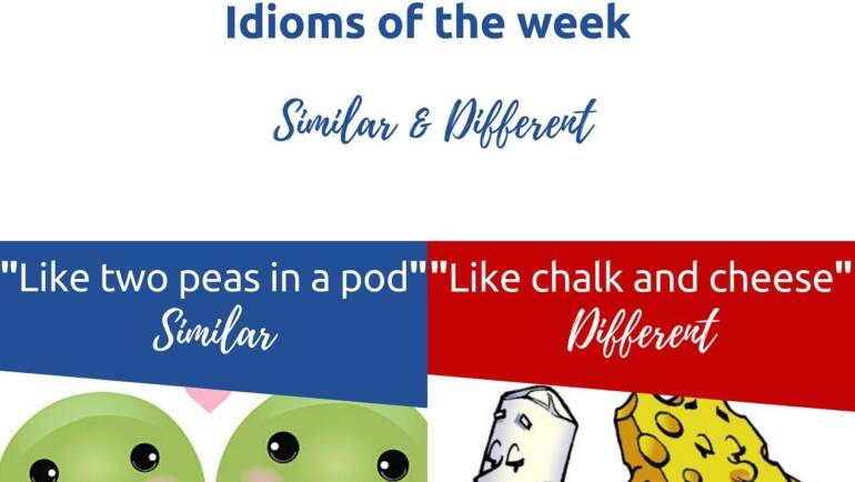idioms of the Week – Similar and different